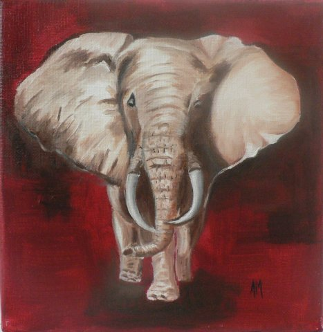 Elephant - Huile - Toile sur chassis - 20 x 20